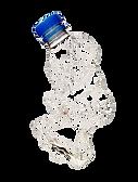 bottle2.png