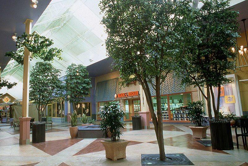 Mall trees
