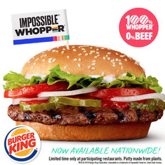 The Impossible Whopper: A Template for an Impossible Adoption?