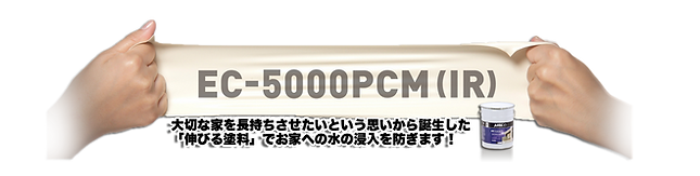ec5000.png