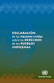 declaracion_onu_derechos_pueblos_indigen