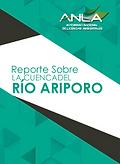 reporte_cuenca_rio_ariporo.png