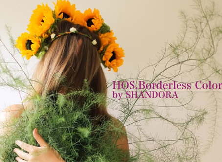 ✨新たなるノンジアミンカラー✨【HOS.Borderless Color】