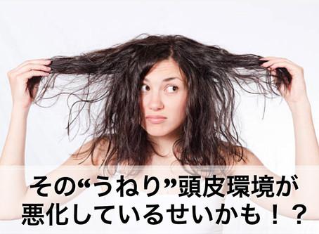 その髪のうねり頭皮環境が悪化しているせいかも…
