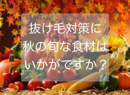 抜け毛対策に秋の旬な食材はいかがですか