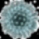 coronavirus-19.png