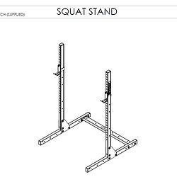 SQUAT STAND.PNG