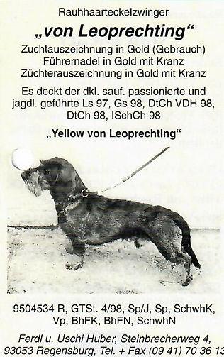 Yellow von Leoprechting b.jpg