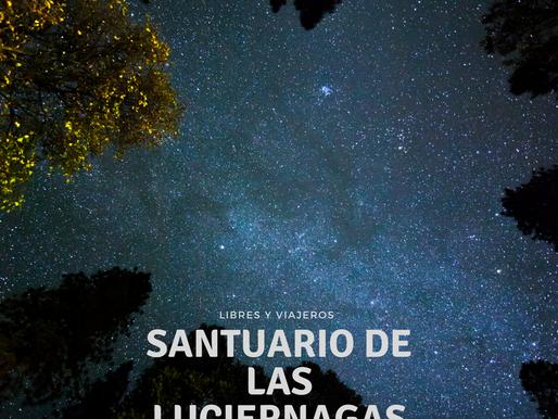 La magia del santuario de las luciérnagas.