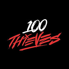 100 thieves logo.jpg