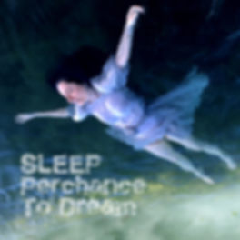 sleep-perchance-to-dream-web-square.jpg