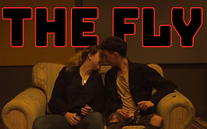 THE FLY (UON Revue 2020: Takeaway Only)