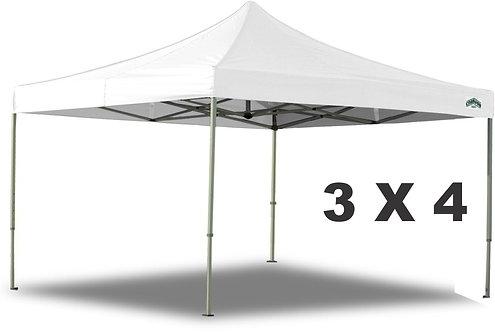 Canopy 3 X 4