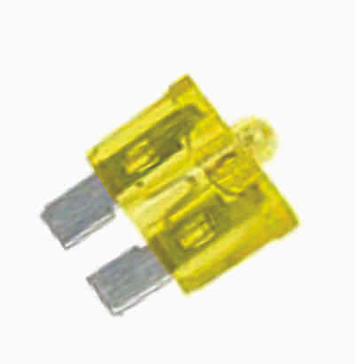 Fuses 30 Amp with Light 100 pcs