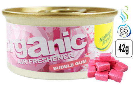 Organic Can Pure Bubble Gum 42g