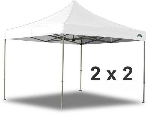 Canopy 2 X 2