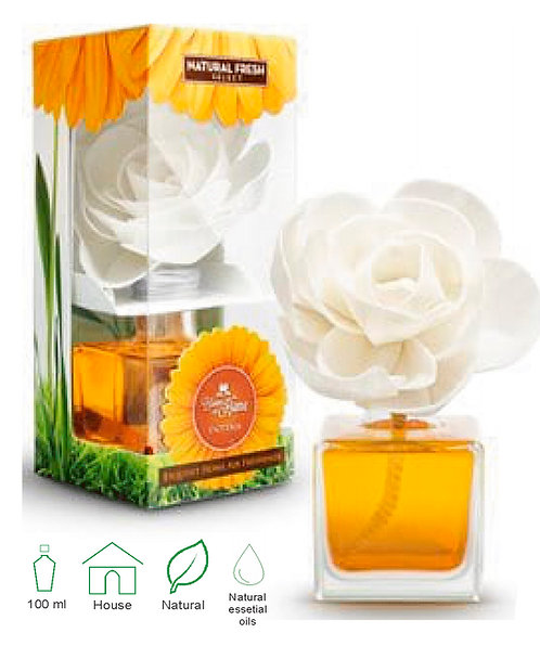 Bloom At Home Esoteria 100ml