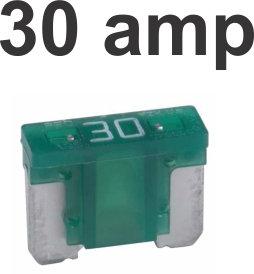 30 Amps Micro Fuse 100 Pcs