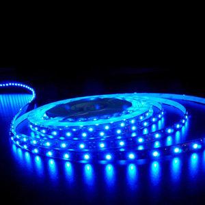 5Mts 300 Led 12V Adhesive Ribbon Blue