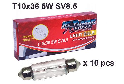 Dome Light Bulb T10x36 10 pcs
