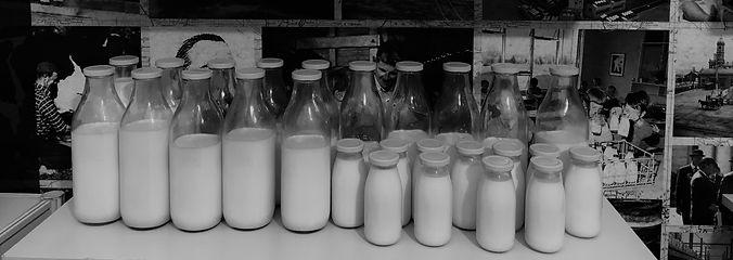 milk home.jpg
