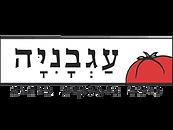 עגבניה משלוחים