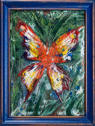 ''Butterfly''  2016