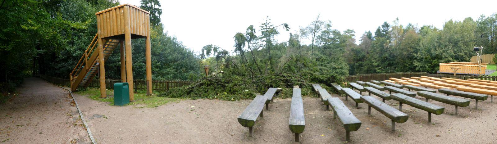 Sturmschaden  (1)