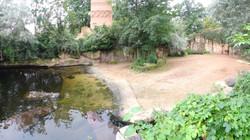 Flusspferdanlage