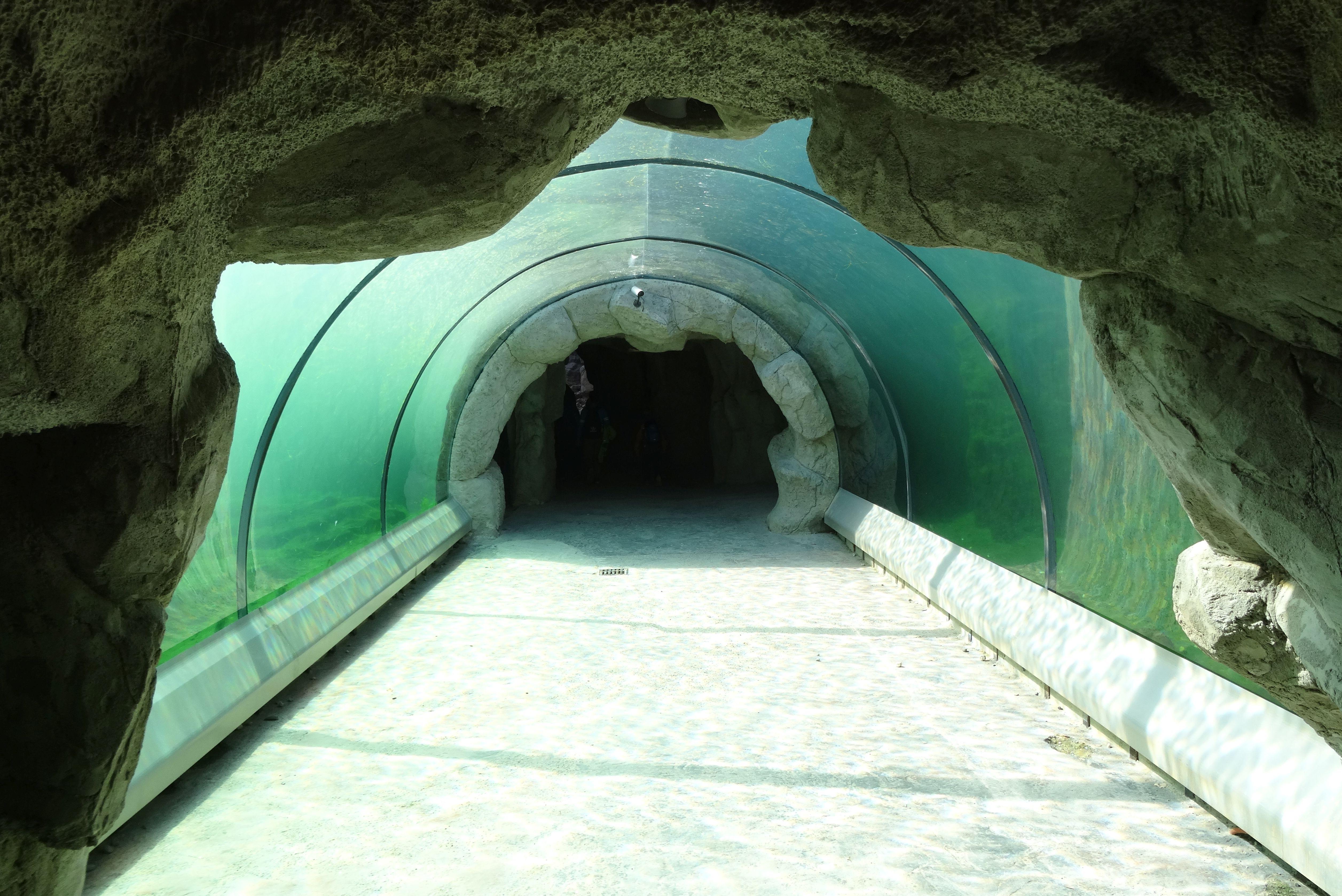 Tunnel_unter_den_Seelöwen