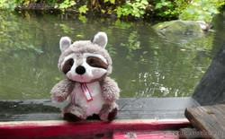Wuschel fährt Boot