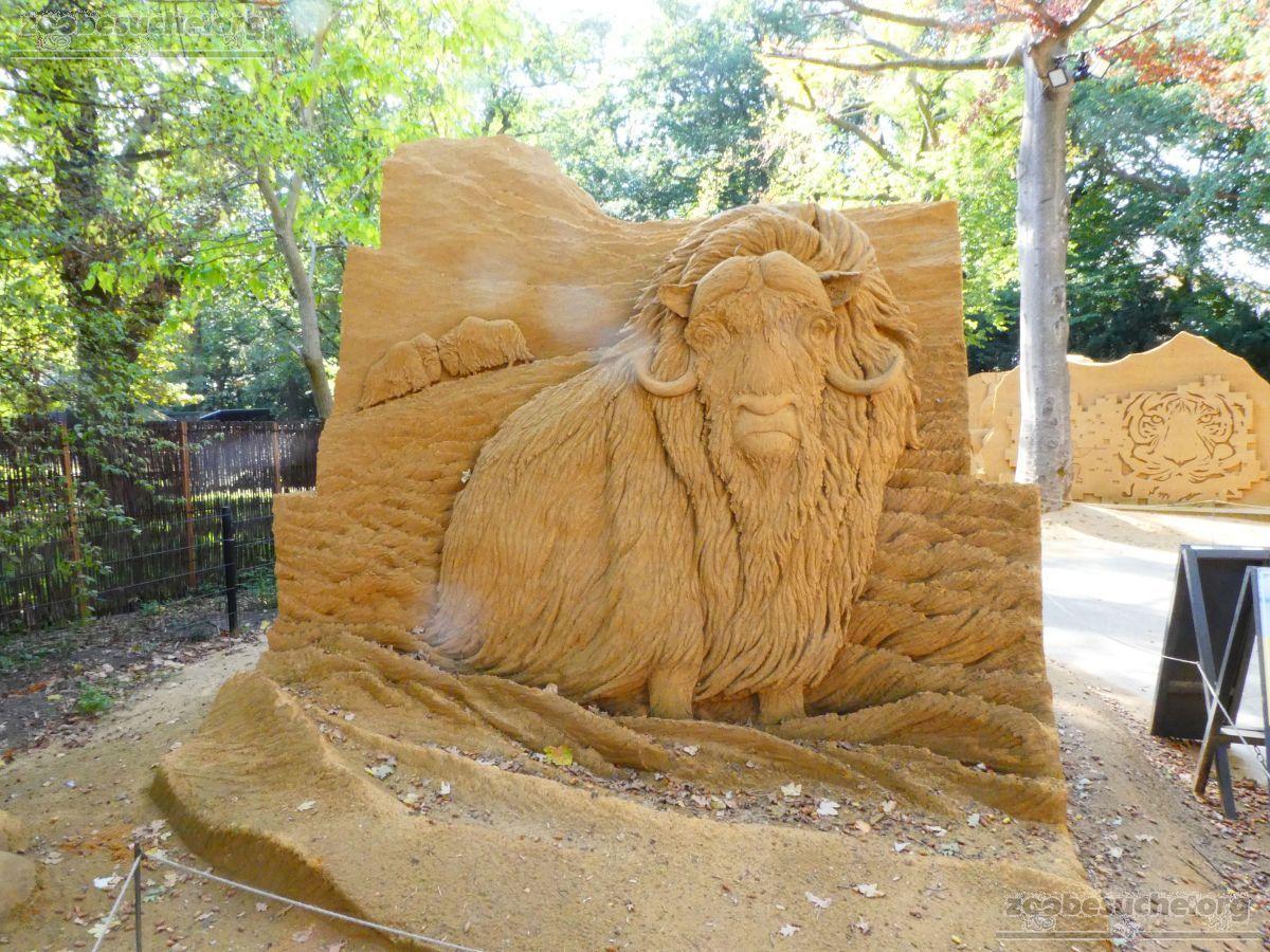 Sandskulptur - Moschusochse