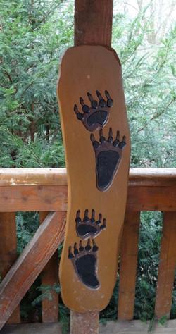 Spuren eines Braunbären