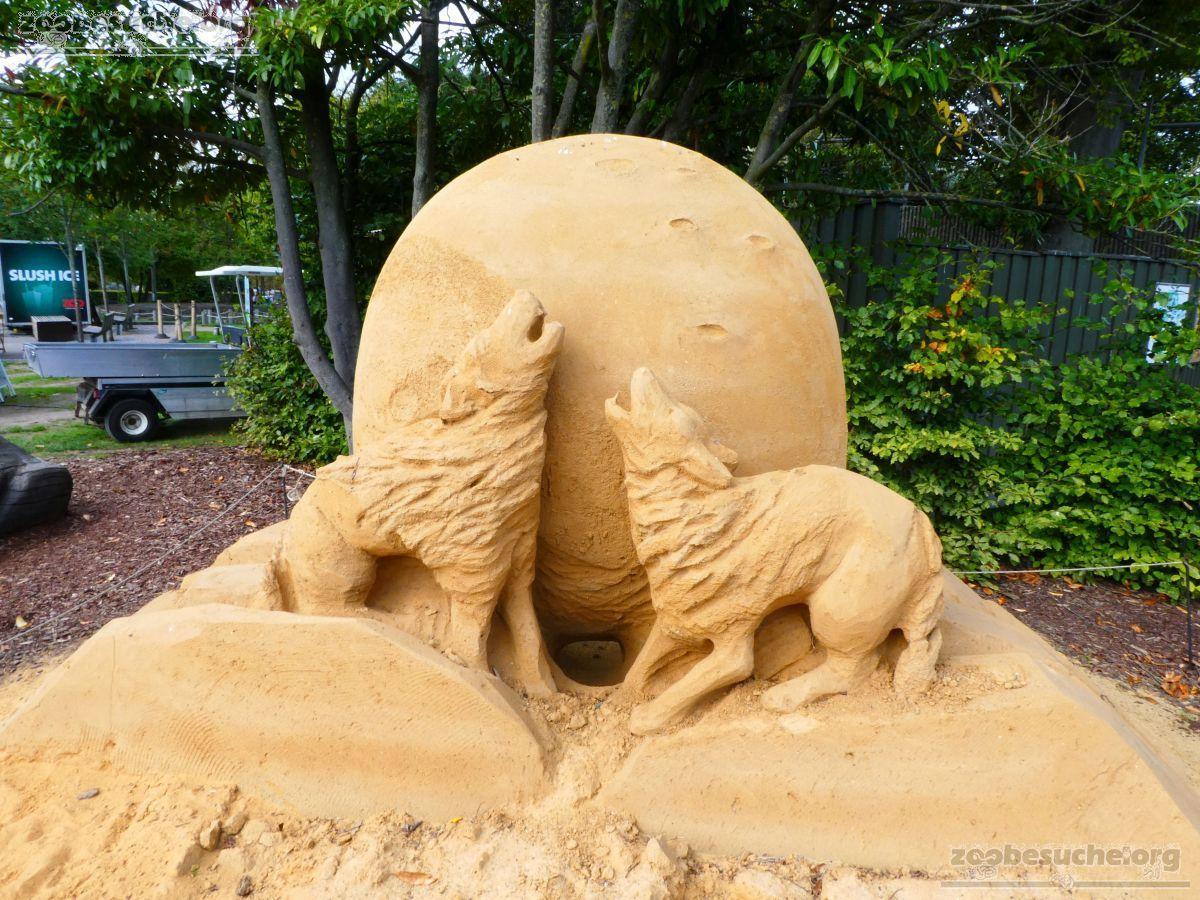 Sandskulptur - Wolf  (1)