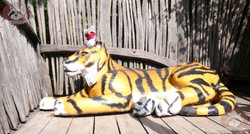 Wuschel auf Tiger