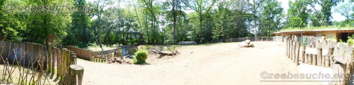 Breitmaulnashorn Gehege (3)