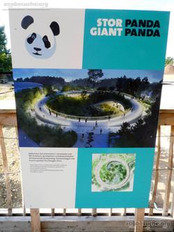 Panda Baustelle  (2)