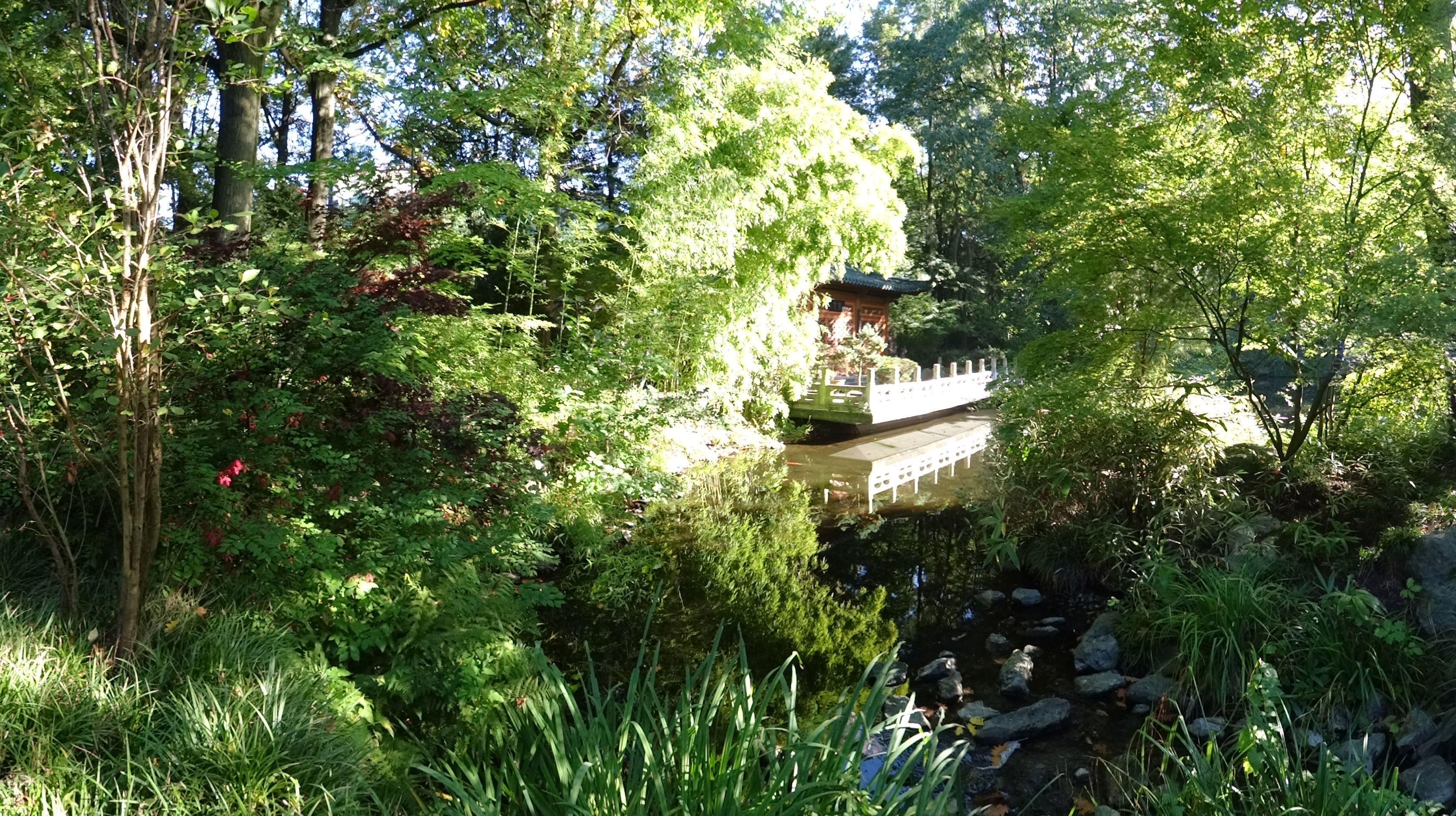 Asiatischer Garten 1