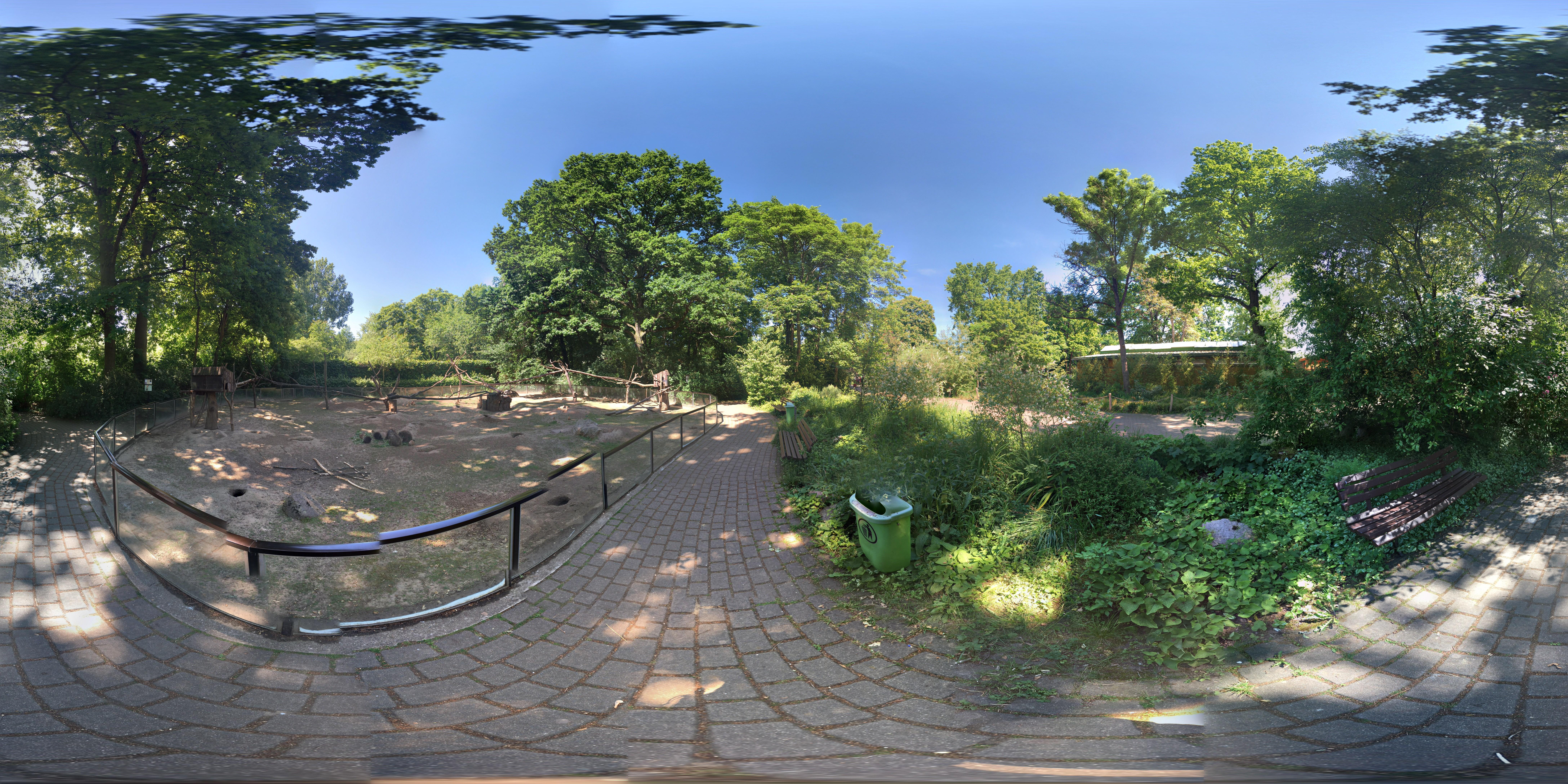 Zoo Magdeburg Baumstachler