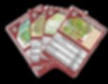Karten Quartett.png