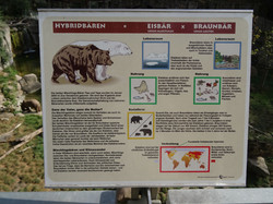 Ausschilderung bei den Hybridbären