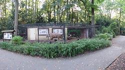 Tigerkäfig