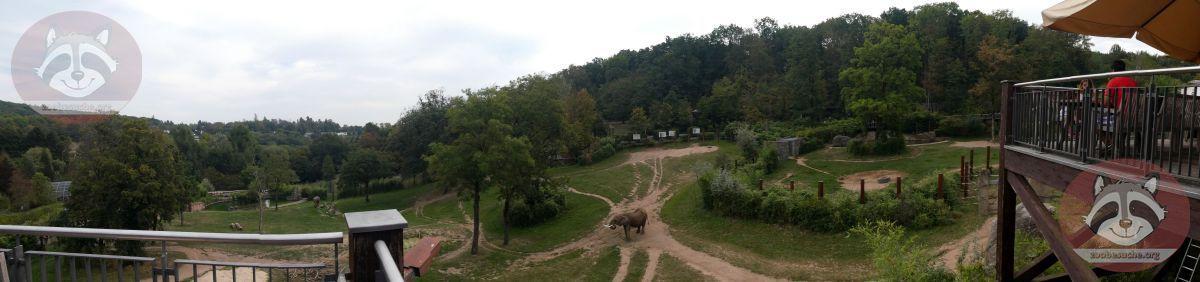 Elefantenanlage (4)