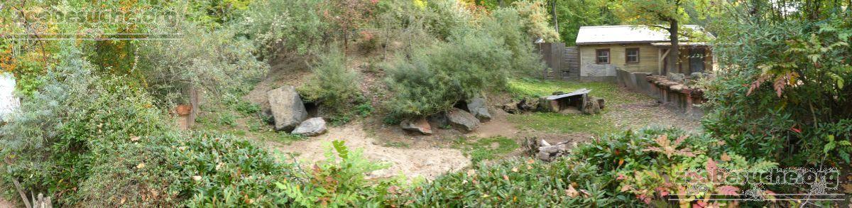 Wombat Gehege