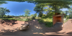 Zoo Magdeburg Nashorn