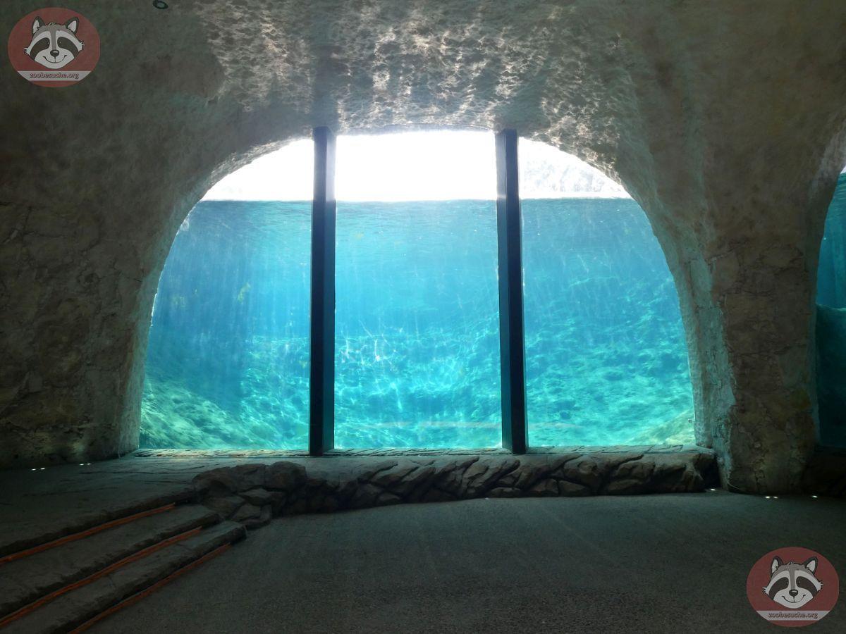 Grotte (2)
