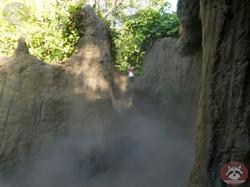 Wuschel im Nebel  (2)