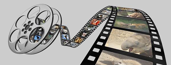 Filmrolle.jpg