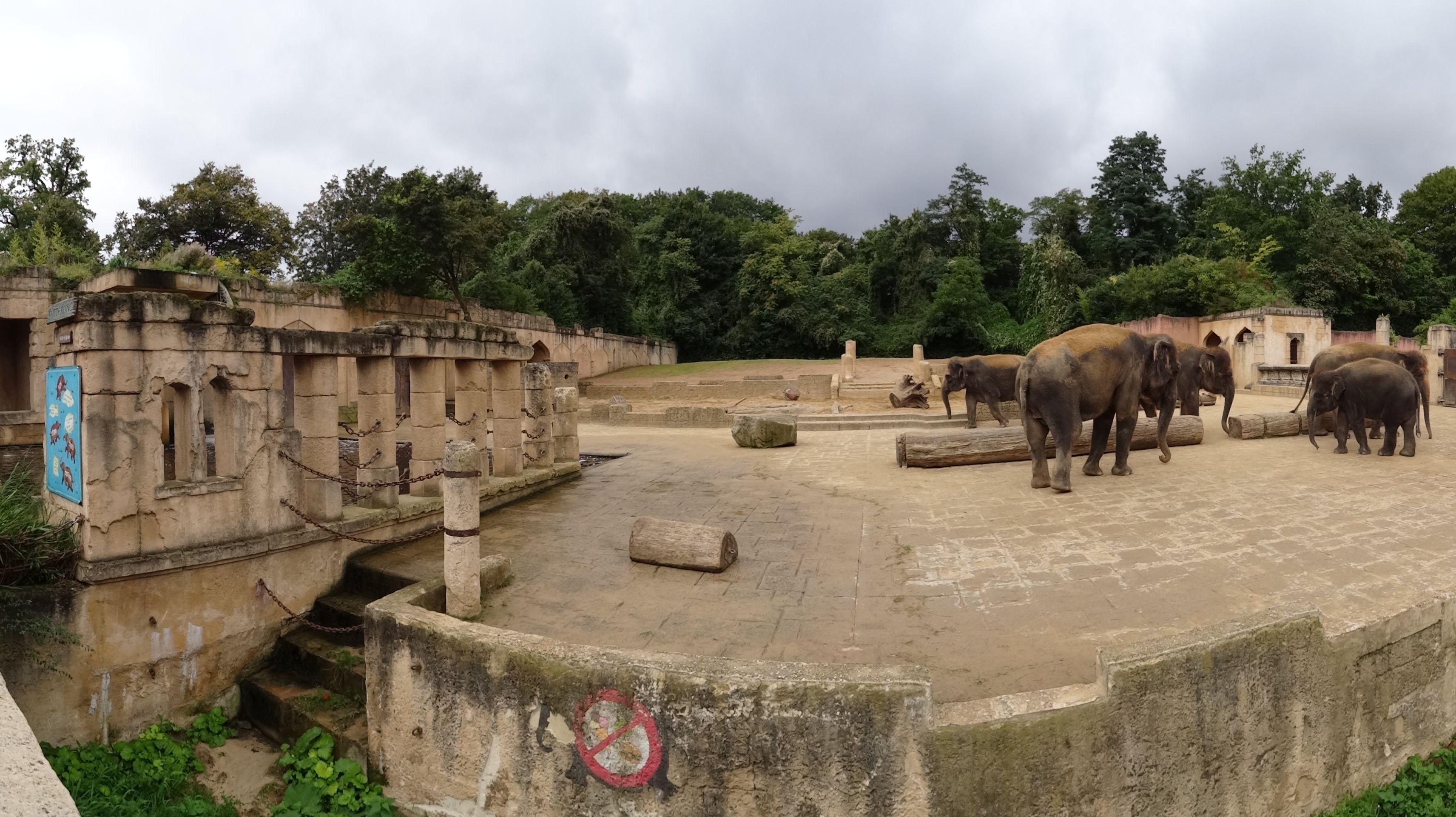 Elefantenanlage
