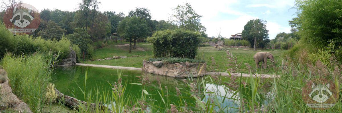Elefantenanlage (2)